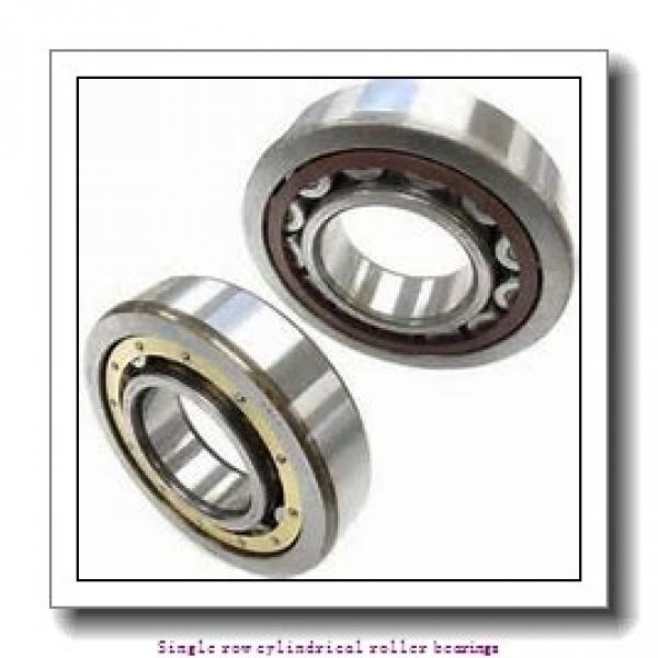 ZKL NU29/950 Single row cylindrical roller bearings #1 image